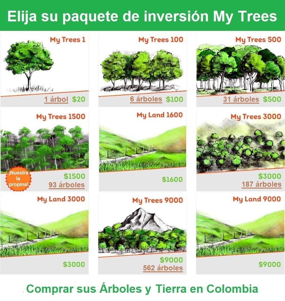 Elija un paquete de inversión My Trees / Compre árboles y tirrea en Colombia. My Trees1 / $ 20/1 árbol. My Trees 100 / $ 100/6 árboles. My Trees 500 / $ 500/31 árboles. My Trees 1500 / $ 1500/93 árboles. My Trees 3000 / $ 3000/187 árboles. My Trees 9000 / $ 9000/562 árboles.