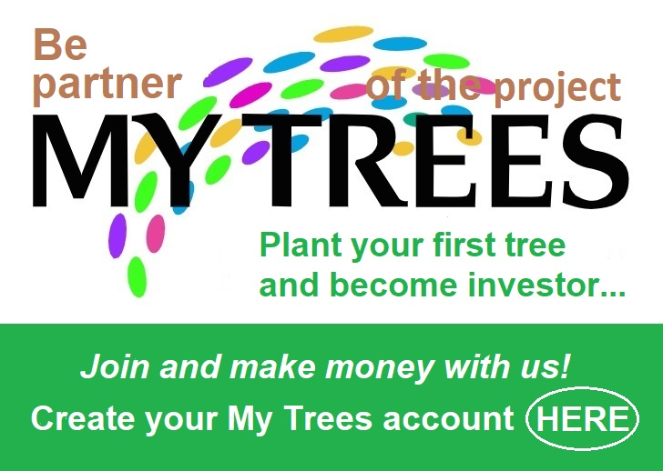 Be partner of the project My Trees - Plant your first tree and become money with us! Create your My Trees account here.