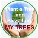 My Trees Global project – Progetto My Trees Global - Pianta un albero e trasmettilo / Registrazione e Accesso