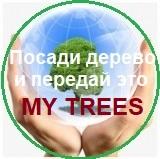 Проект «Мy Trees» – Посади дерево и передай это / Регистрация и Логин