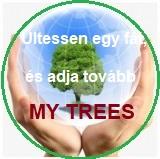 Proiekt My Trees – Ültessen egy fát és adja tovább / Regisztráció és bejelentkezés