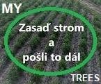 My Trees Global projekt – Zasaď strom a pošli to dál / Registrace a přihlášení