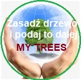 Projekt My Trees – Zasadź drzewo i podaj to dalej / Rejestracja i logowanie width=